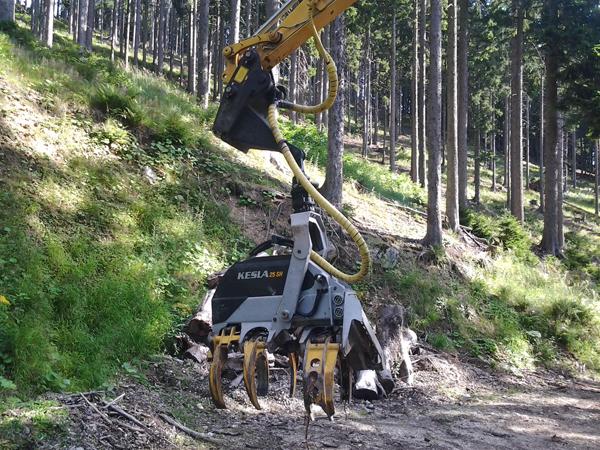 Reichert Servicecenter Referenzen - Forstmaschinen